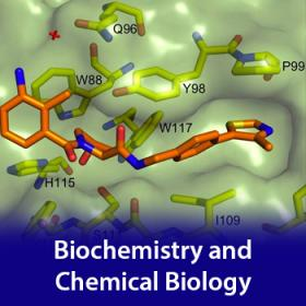 Biochemistry and Chemical Biology