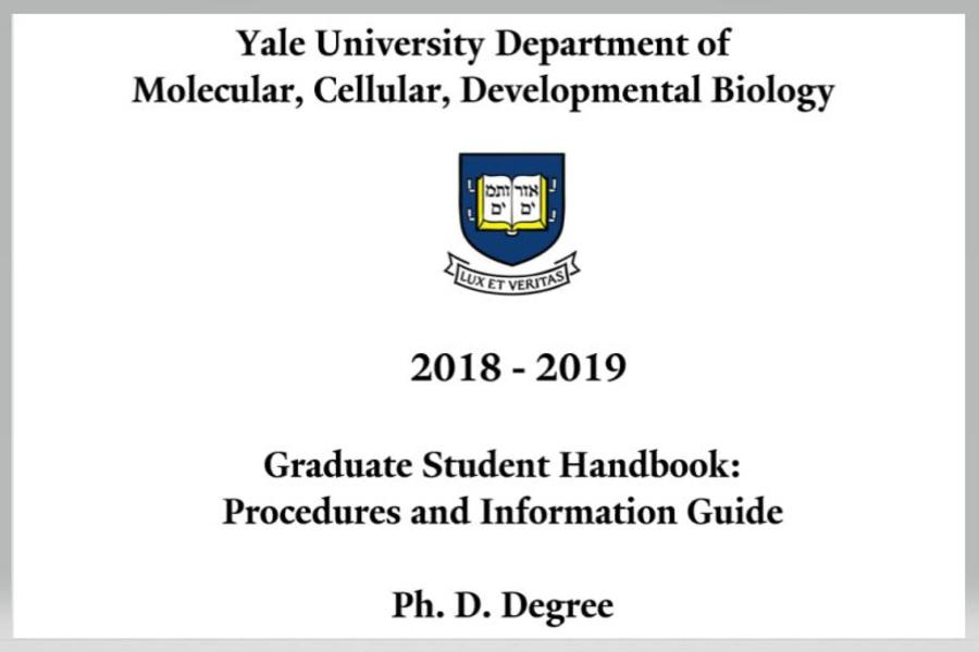procedures and information guide for PhD degree