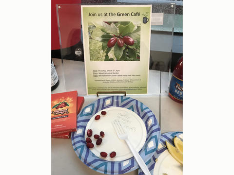 Miracle berries and announcement of the Green Cafe presentation