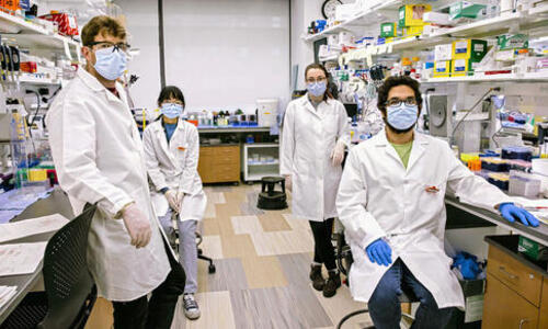 Left to right; Nicholas Huston, Han Wan, Madison Strine, and Rafael Araujo Tavares working in Anna Marie Pyle's lab. (Photo: Dan Renzetti)