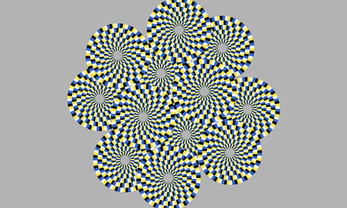 clark lab my snake optical illusion image