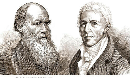 sketches of charles darwin and jean baptiste lamarck