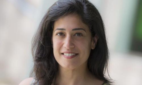 Shirin Bahmanyar, Ph.D.