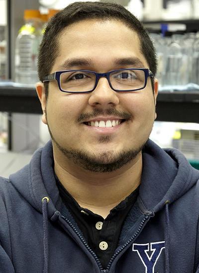 Rafael Araujo Tavares's picture